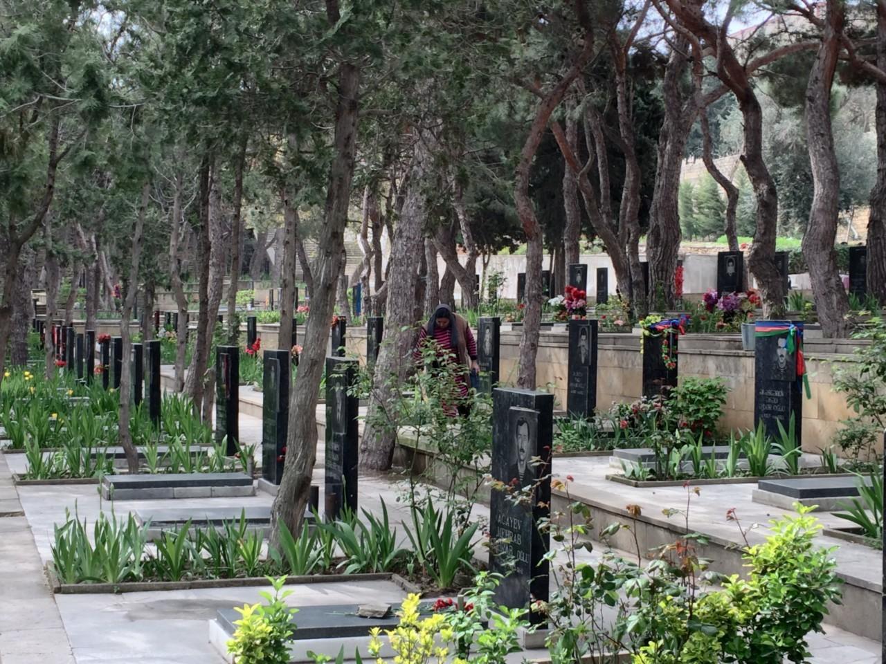 Martyr's Alley Garden