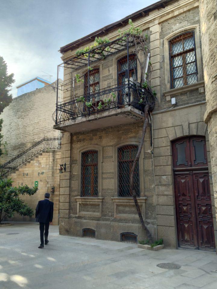 Twisty tree on a balcony in Baku