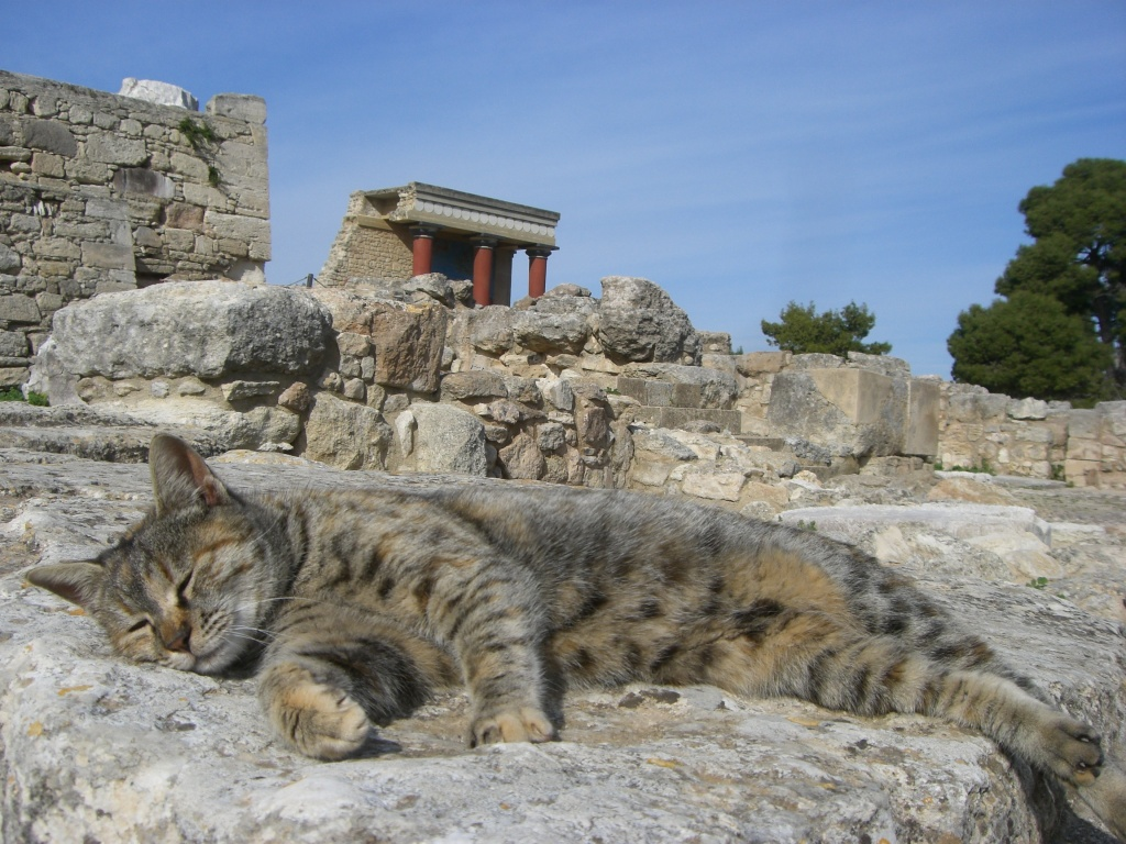 Kitty on his throne at Knossos, Crete.