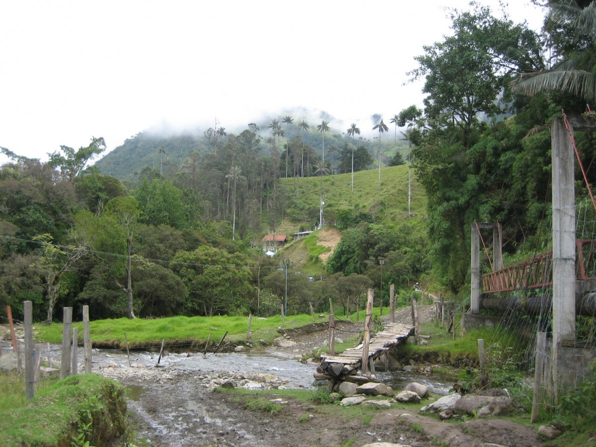 Mountains and forests in Colombia