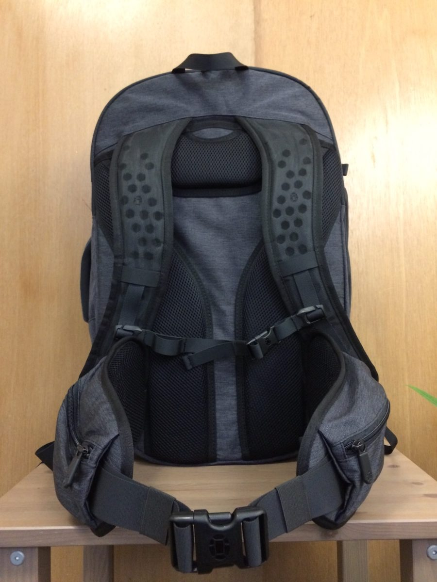 Tortuga Setout Backpack main back panel view