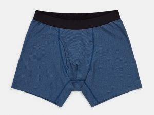Wool and Prince Boxer Brief 2.0